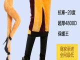 2014年新款 加肥加大羊羔绒打底裤 加厚加绒一体裤 女士保暖裤