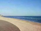 《燕郊二手房》东戴河海景房 空气好 价格合适 出门是海