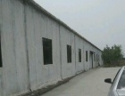 安丘双丰大道南500米 厂房 800平米 低价出租出售