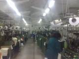 超声波加湿器 印刷厂除静电设备 石家庄喷雾设备