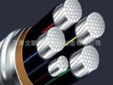 铝合金电缆 电缆 电缆厂家 电缆厂 铝合金电缆