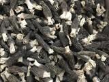 云南满泽野生羊肚菌多少钱一斤