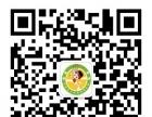 2017泰安市卓易青少年网球俱乐部寒假招生