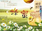 贵阳哪里的蜂蜜正宗,贵阳纯蜂蜜多少钱一斤