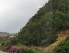 凤庆大兴 土地 3670平米