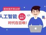 杭州少兒計算機編程入門班,機器人課程編程,樂高課