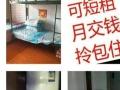 家庭型女子公寓常年招租220