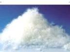 厂家直供70%灰鸭绒,水洗灰鸭绒,服装填充物。