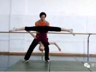 南京专业少儿芭蕾舞 中国舞 拉丁舞 毯子功培训 小班教学
