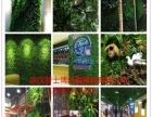 武汉仿真植物软装 仿真树 仿真花 仿真植物墙