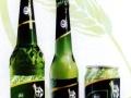 金川啤酒 金川啤酒诚邀加盟