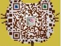苏州新区平面设计培训浒关通安PS培训网站美工设计东渚广告设计