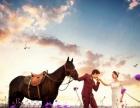 维也纳婚纱摄影 特惠3456万平米维也纳5D全实景