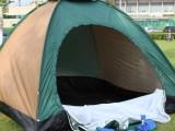 户外野营4人帐篷 四人单层宿营帐/防风防雨防蚊防紫外线帐篷批发