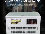 大泽动力25kw静音汽油发电机