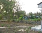 陵水黎安镇靠近公路土地 300平米 可自建住房