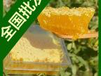 蜂巢蜜 自然封盖巢蜜 纯蜂巢蜜 天然 野生 蜂农自产蜂窝蜜 格子蜜