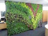 假植物墙制作 仿真花仿真绿植墙 假树假竹子制作 专业团队