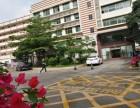 龙华清湖单层700平精装办公室厂房出租