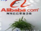 供应化工菎类产品 蒽醌 苏州、无锡、江阴