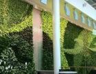 南宁植物墙 南宁花墙 绿雕 大型花艺 仿真花
