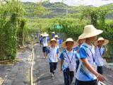 深圳亲子活动基地大鹏亲子旅游美丽乡村亲子成长体验营地