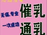 桂城24小时催乳通奶 南海催奶断奶13年服务 陈村催乳师