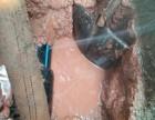 东莞家庭暗管渗水查漏长安地下管线探测服务电话