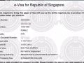 新加坡旅游/商务签证申请 免原件申请 全国收送