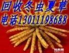 河北高价回收冬虫夏草东阿胶13011198688回收海参鱼肚