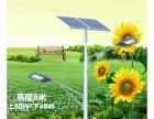 吉林价格合理的太阳能景观灯厂家,价格不贵销量领先