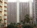 镇平闫庄新型社区 6室2厅2卫 ,经商居住两不误超大门面