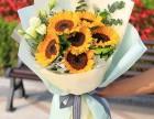 暖意满满-精品向日葵花束网上预订