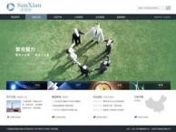 咸阳做企业网站建设推广的网络公司
