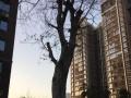 河西景园盛世华都毛坯63万元3室2厅2卫0阳台出售