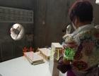 铜陵横达洁具厂,浴室柜生产订制