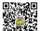 菠萝字母云南昆明加盟 儿童早教玩具投资159