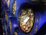 厦门市收餐饮业酒店,泔水,潲水,剩饭剩菜,餐厨垃圾,