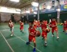 合肥极光少儿篮球培训公司