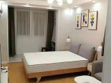 陸家嘴 1室 1廳 60平米 整租