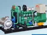 耐普特20kw天然气发电机 潍坊耐普特燃气发电机生产厂家