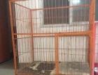 大狗笼便宜出售有需要的联系