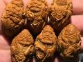 威海市哪里有卖狼牙 骆驼骨 猛犸牙雕?文玩市场