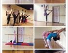 少儿成人专业舞蹈培训 基本功 艺考 中国舞 芭蕾