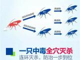 西安灭蟑螂公司电话