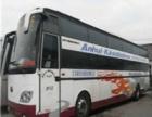 从承德到哈尔滨直达客车多少钱?(汽车)在哪里上?+几个小时到
