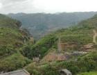 贵州 水电站转让 合作方式灵活