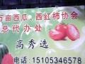 西瓜。西红柿代办