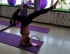 艾扬格瑜伽导师教练班