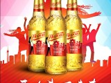 英豪奋斗系列啤酒2019火爆的啤酒